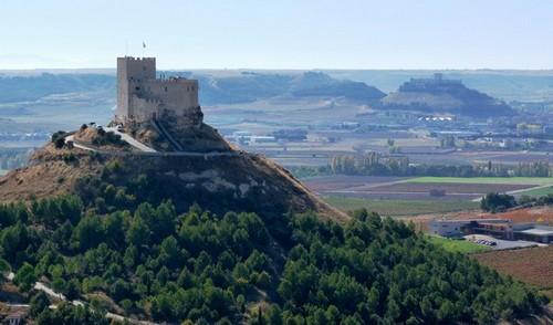 Винные туры и экскурсии Мадрид Испания - Винодельческий тур Рибера дель Дуэро Ribera del Duero 4 дня (3 ночи)